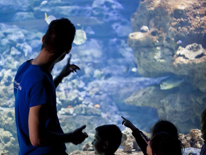 Aquarium de Paris Cinéaqua